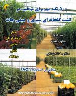 500 نكته مهم براي موفقيت در كشت گلخانه اي سبزي و صيفي جات